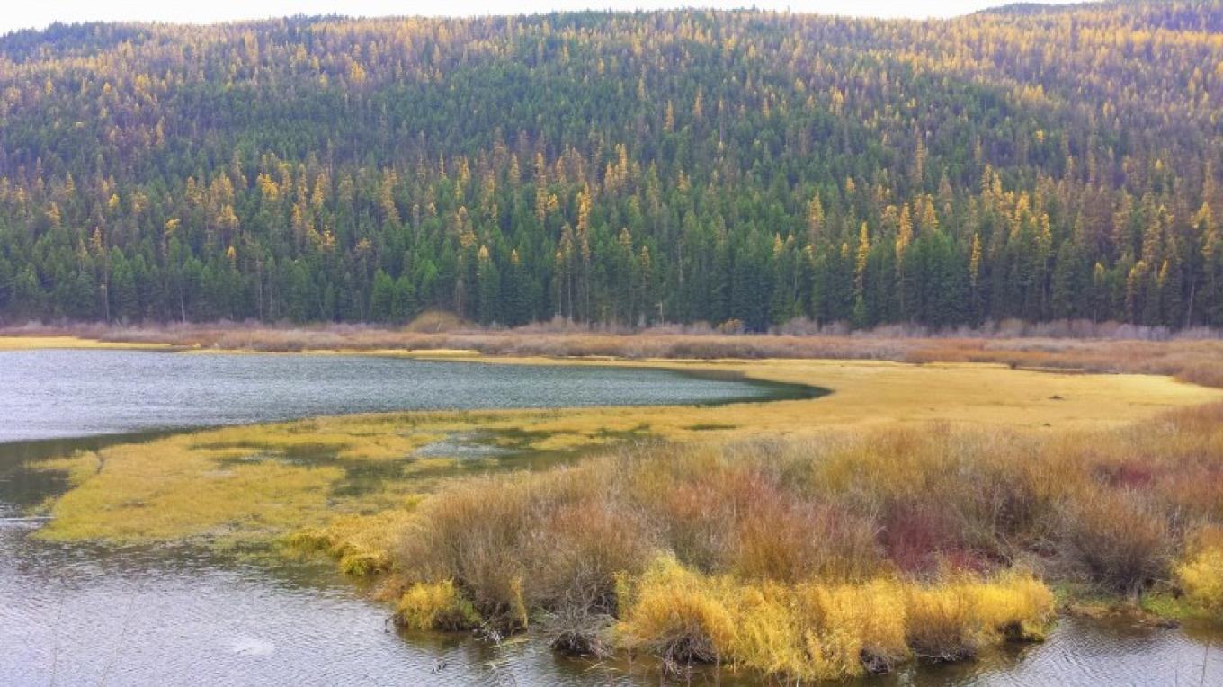 Clearwater River flows into Salmon Lake.