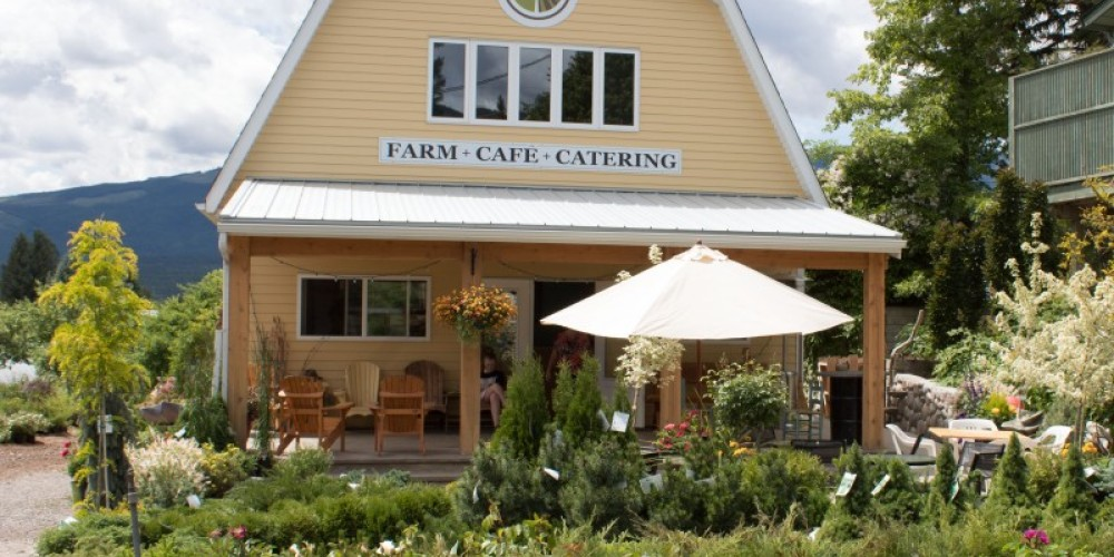 Edible Acres Cafe – Sheena Pate