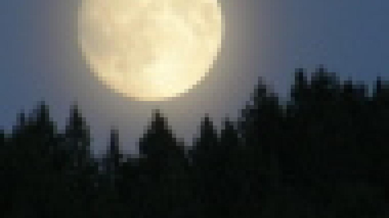 Full moon rising - with little light pollution in the country, our night sky displays a sea of diamonds that twinkle - just for us! – debbie webster