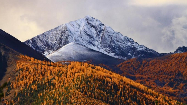 Tamarack Ridge Walk – Stephan Malette