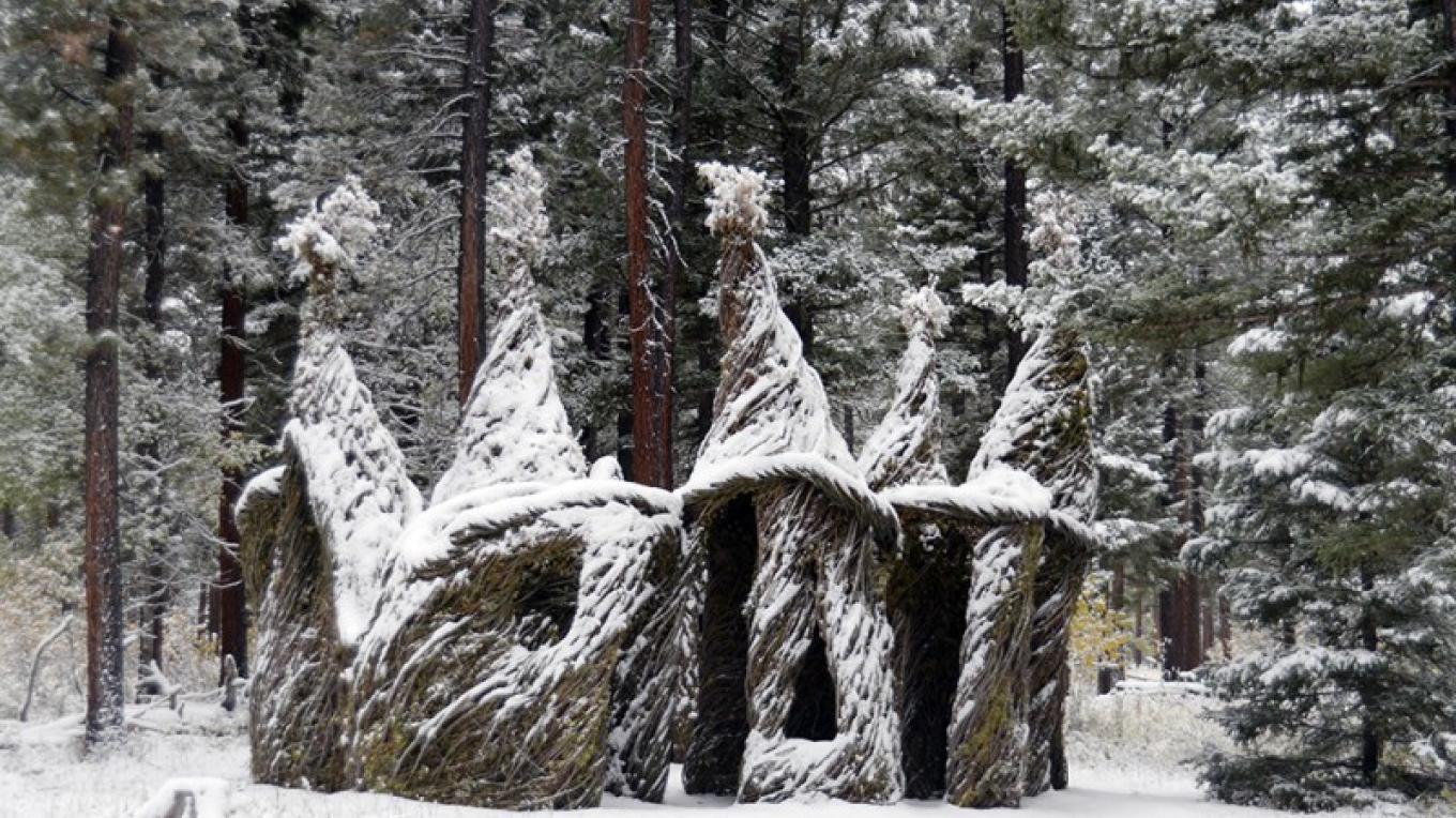 Tree Circus by Patrick Dougherty (USA). winter scene – Kevin O'Dwyer