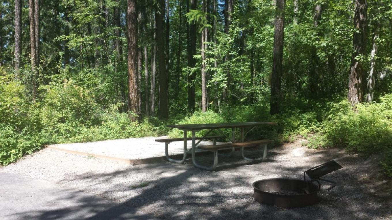 Tent and RV camping available in a forested setting. – Sheena Pate