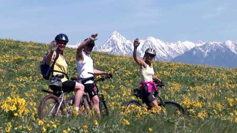 Cycling through Balsamroot, natures\'s harbinger of summer. – Chris Dadson