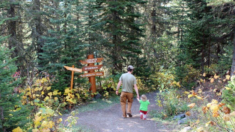 Lake Trail – Sheena Pate
