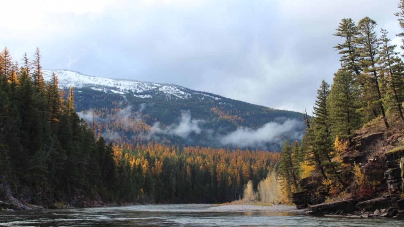 South Fork of the Flathead River – Sheena Pate