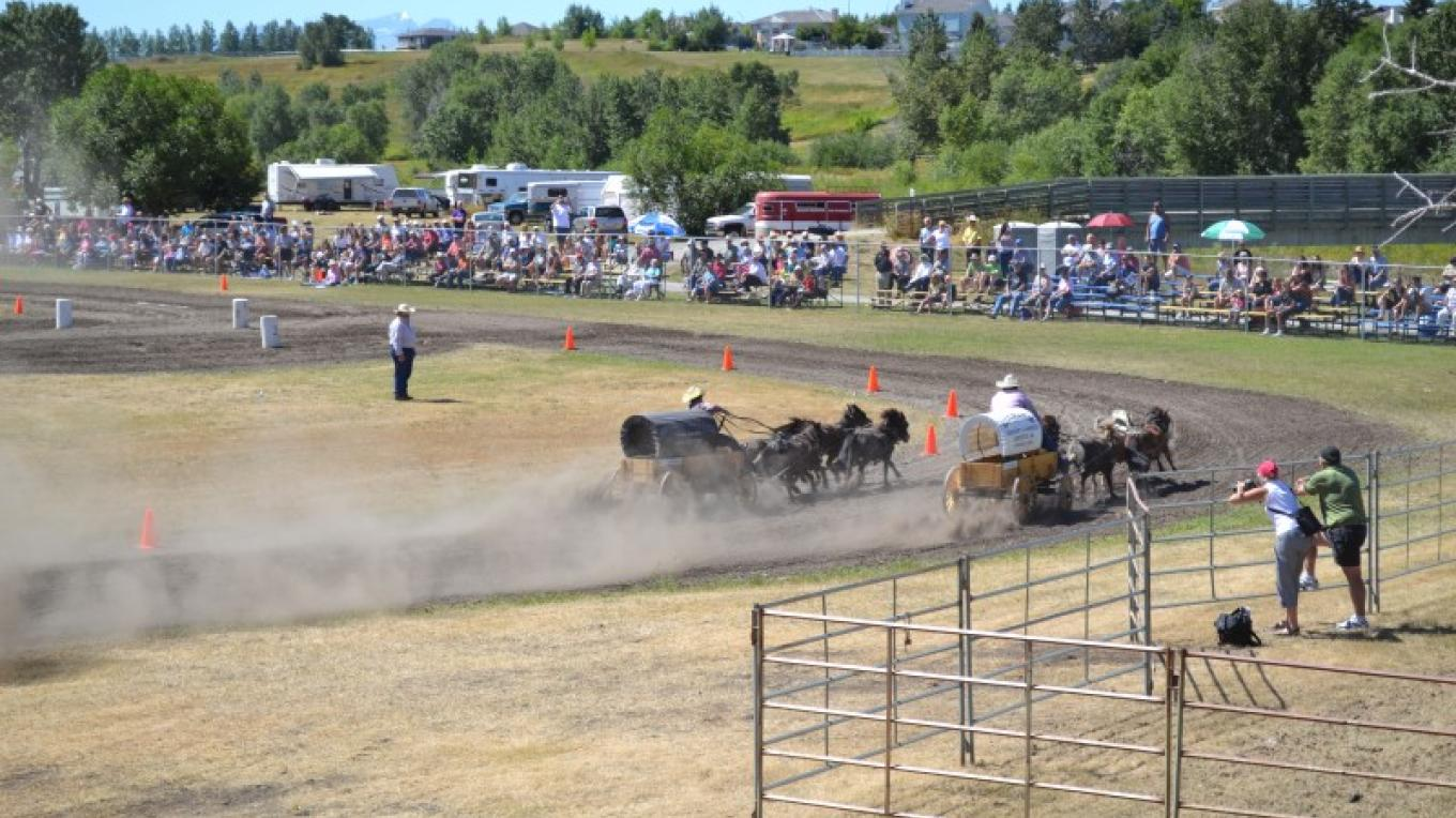 Mini Chuckwagon races held each August in Cardston, Alberta – Star Media Services
