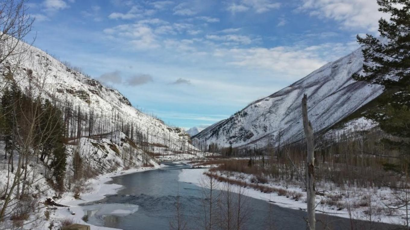 North Fork of the Flathead River – Sheena Pate