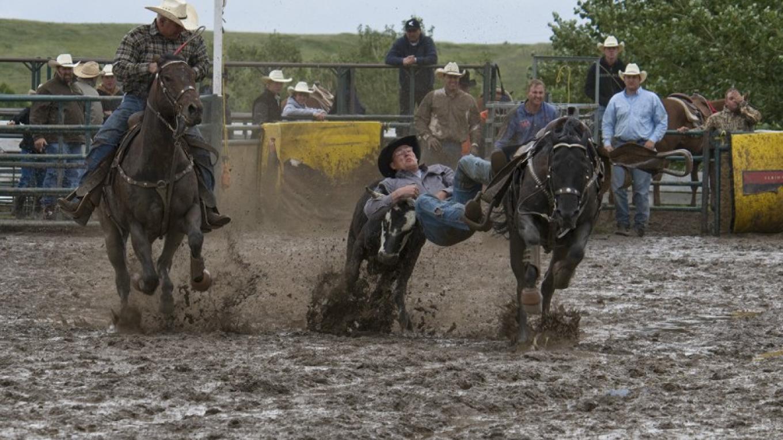 Steer wrestling – Trevor Page