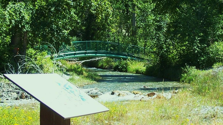 Bridge crossings provide a bird's eye view of the creek restoration work – Nick Berzins