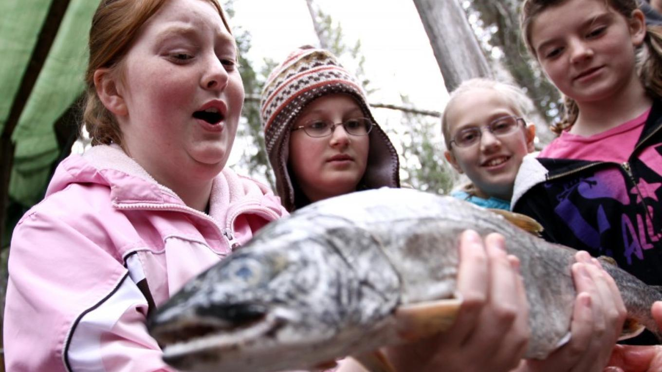 Fisheries up close and personal! – N. Chute