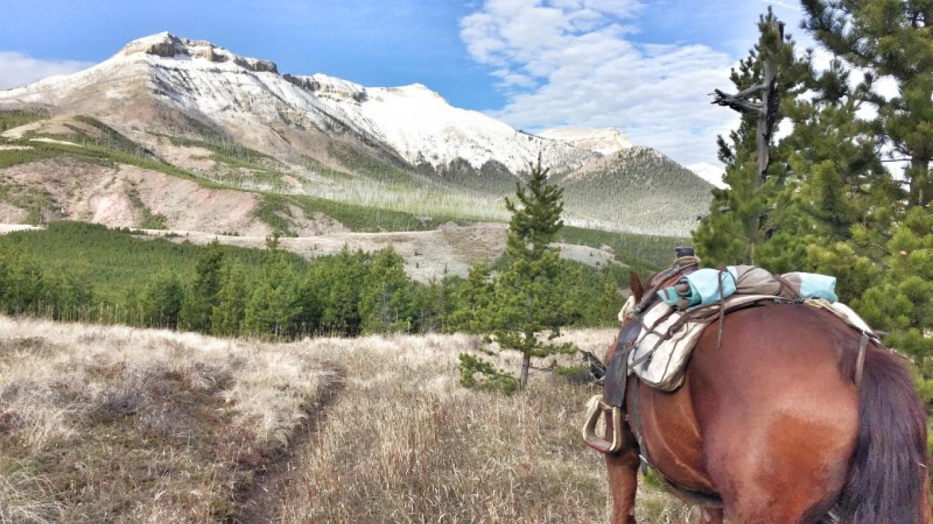 Scapegoat Wilderness – Mills Wilderness Adventure of Montana