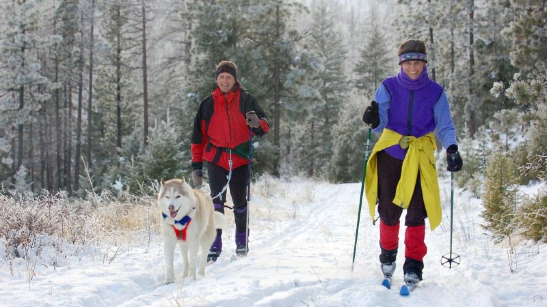 Wintertime Fun – Karen Nicholson
