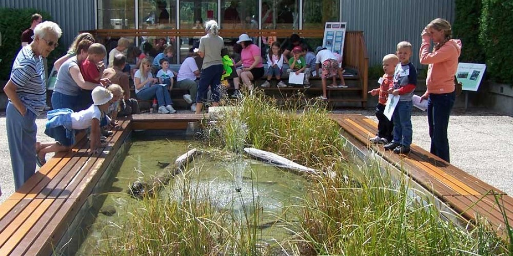 Fun and informative programs are offered. – Kootenay Trout Hatchery