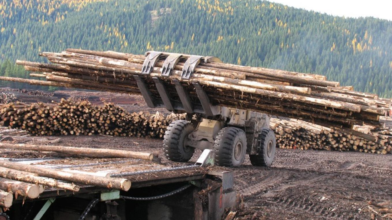 Timber is loaded for sawing into commercial lumber. Much of today's timber source consists of salvaged lodgepole pine, killed by mountain pine beetle. – David Thomas