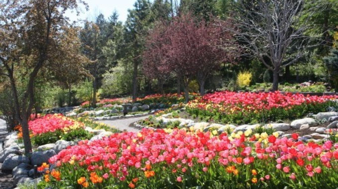 """The \""""Loop Garden\"""" is just one of many beds in the varied landscape of Bibler Gardens."""