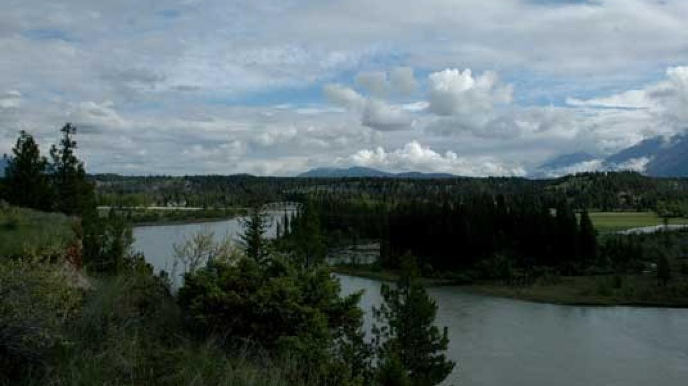 The Kootenay River at Skookumchuck flowing south alongside the Purcell Mountains. – Ruth Martens