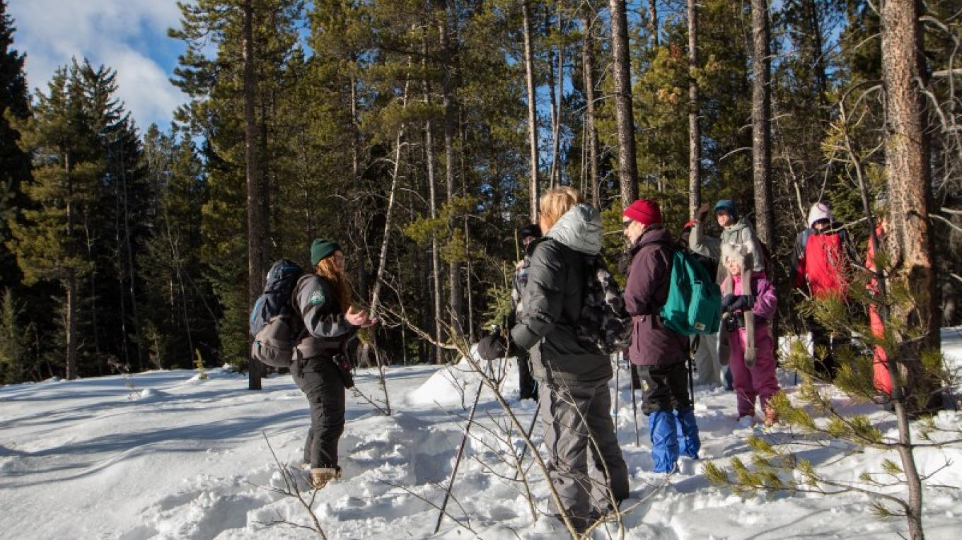 Castle Parks Winter Trails- Guided Hike – Sheena Pate