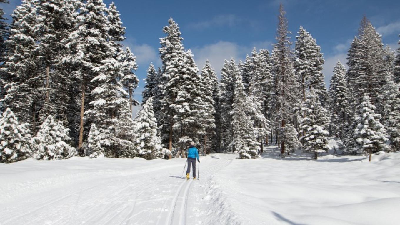 Groomed classic and skate ski trails. – Sheena Pate