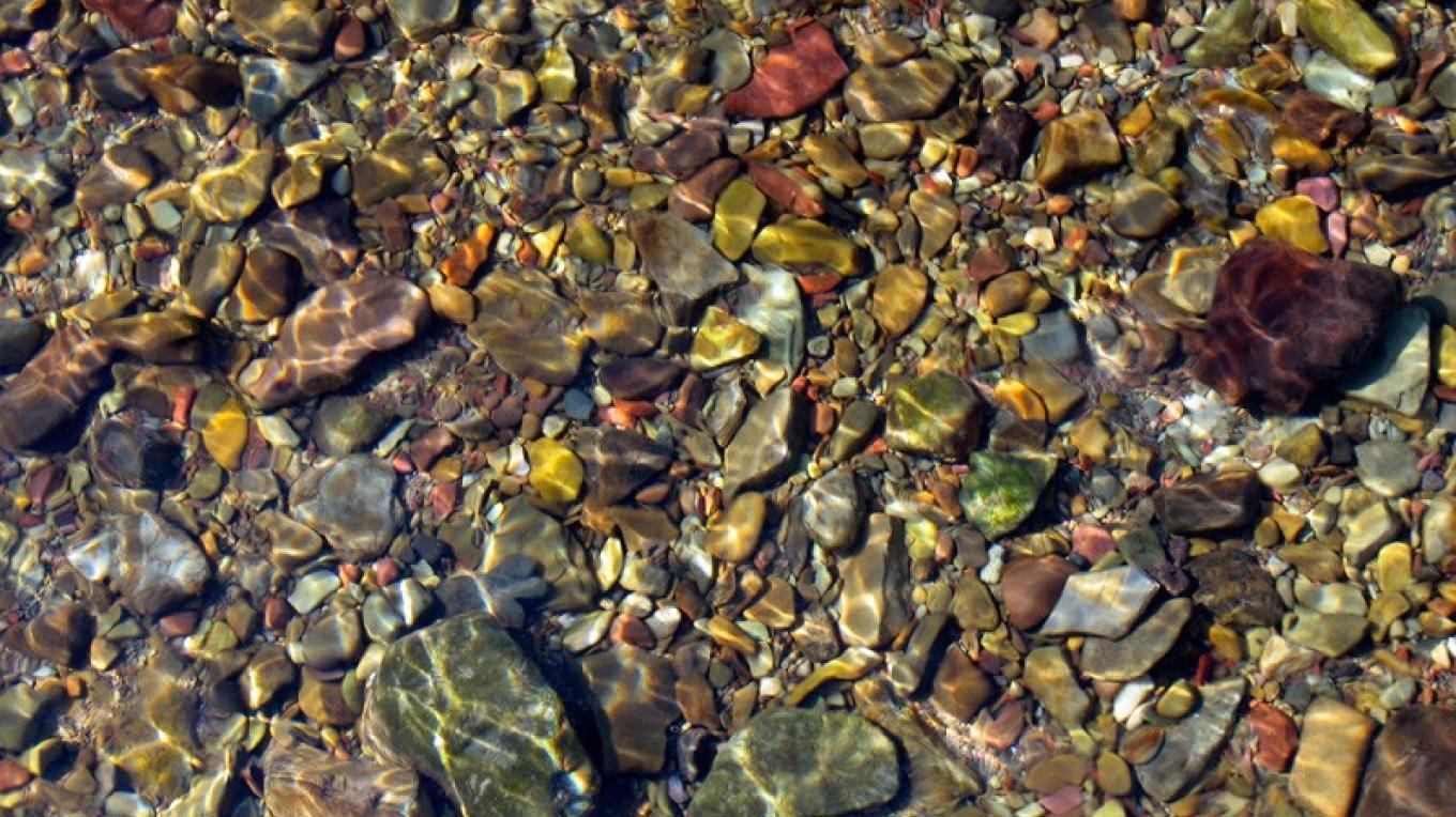 Bottom of West Castle River is a colourful mosaic of pebbles and stones. – David Thomas