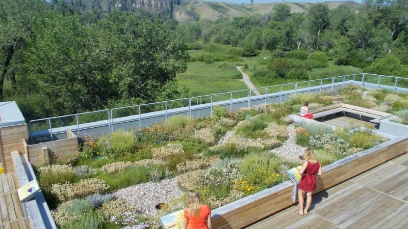 Nature Centre Living Roof – Courtesy Helen Schuler Nature Centre