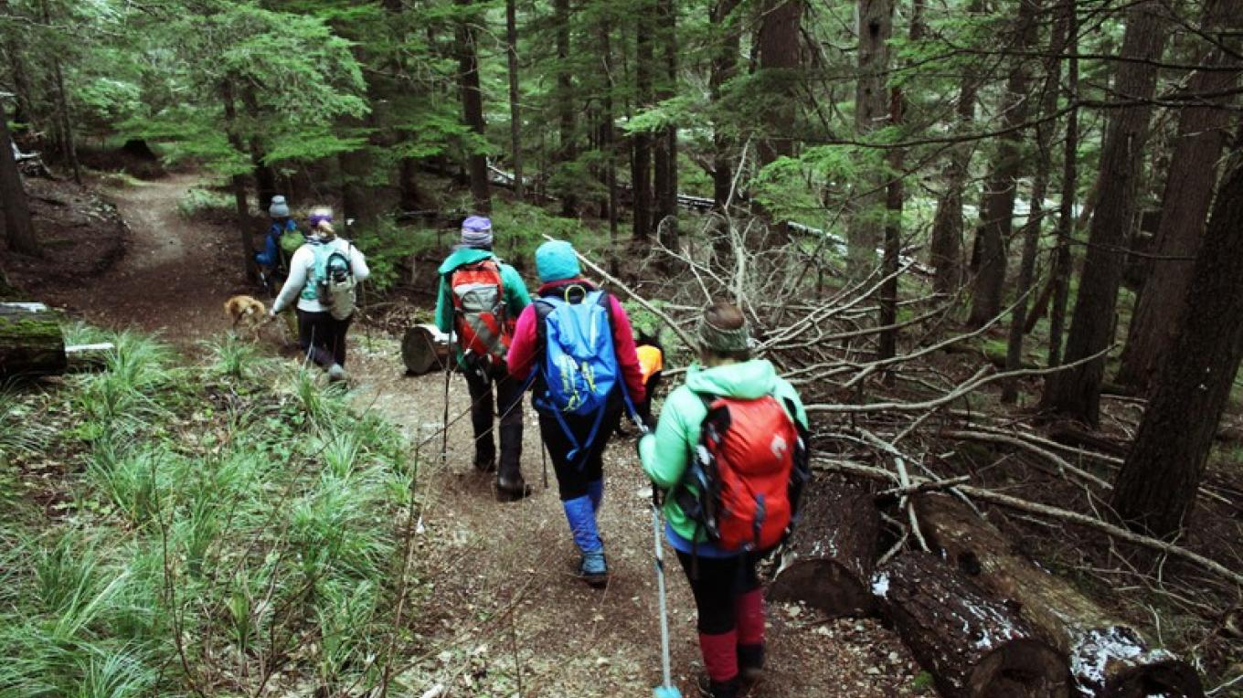 Strawberry Lake Trail meanders through a lush coniferous forest much of the way. – Sheena Pate