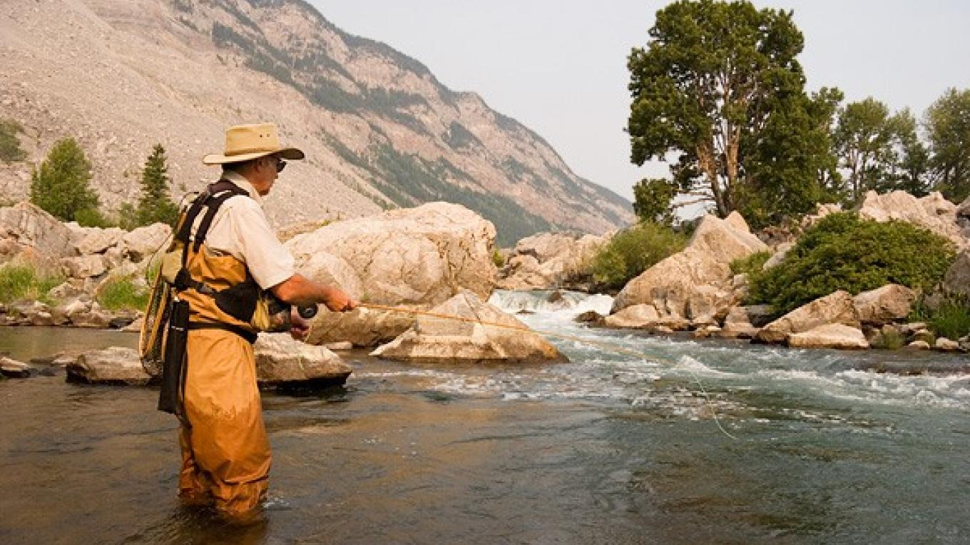 A fly fisher on the Crowsnest River, near the base of Turtle Mountain and the Frank Slide – Vic Bergman/Crowsnest Angler