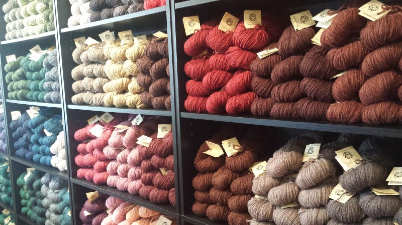 Locally grown Beaverslide Dry Goods Yarn. – Sheena Pate