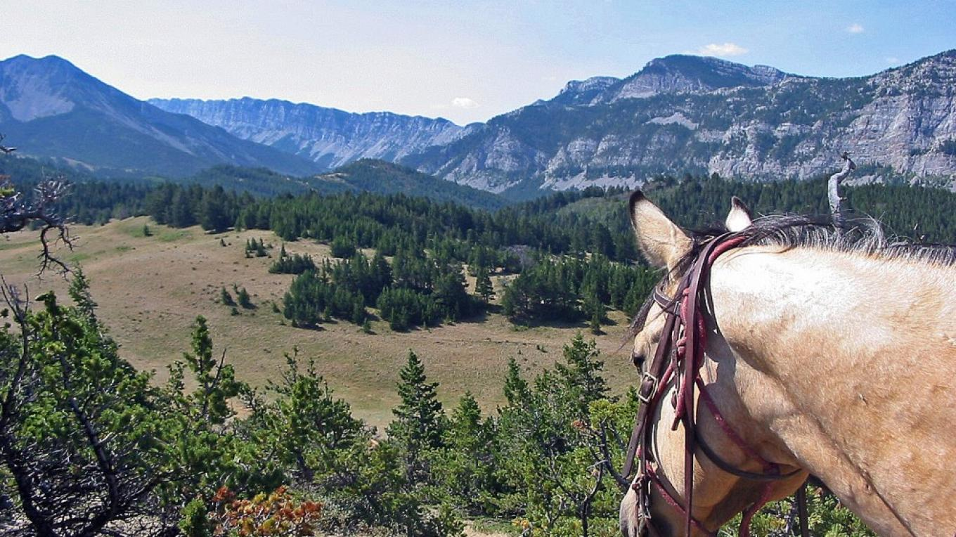 Rocky Mountain Horseback Riding – Ernie Barker