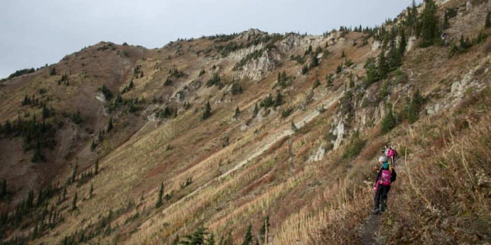 Ascending Peters Ridge Trail towards the saddle of Peters Ridge. – Sheena Pate