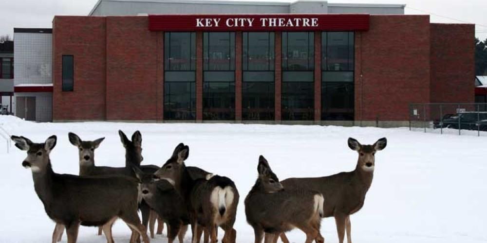 Cranbrook's Key City Theatre is a fine arts facility.  Resident deer visit often. – Kerstin Renner