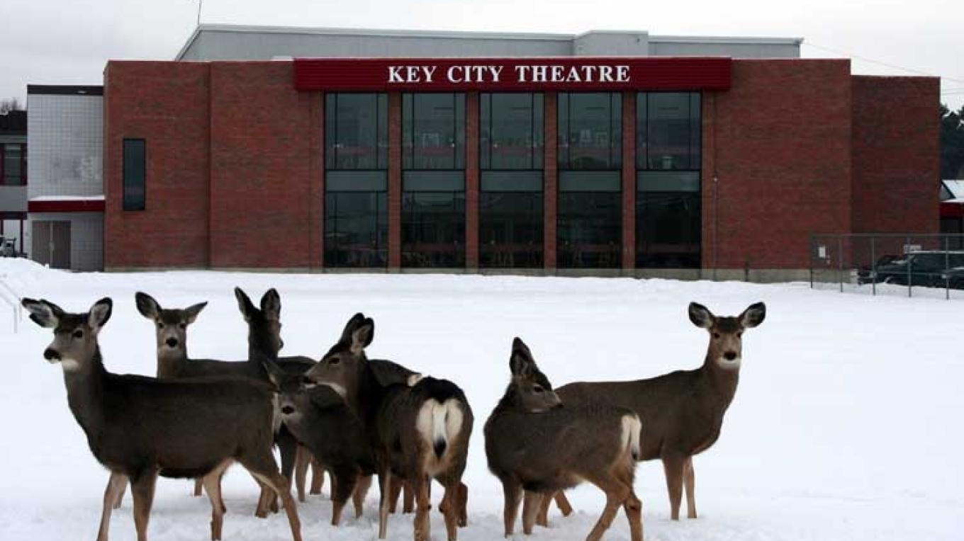 Cranbrook's Key City Theatre is a fine arts facility.  Resident deer visit often. – Kerstin Renner