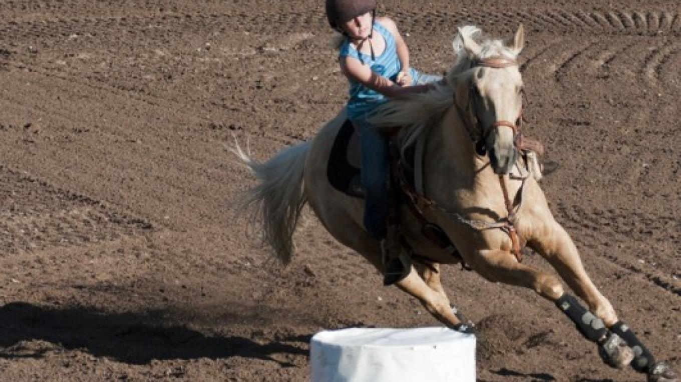 the Montana Chapter of the American Barrel Horse Ass'n holds an event the night before the rodeo – Roger M. Dey