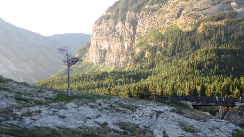 Many Glacier Valley – Sheena Pate