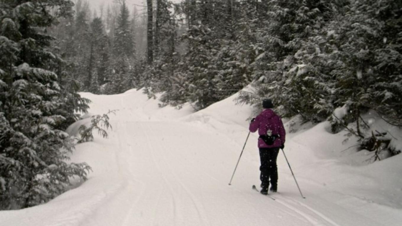 Fernie Nordic Trails – Fernie Nordic Society