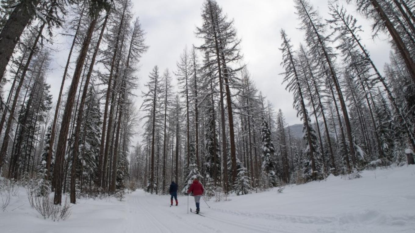 South Star Cross Country Ski Trails – photo by Janice Strong (http://janicestrong.com/)