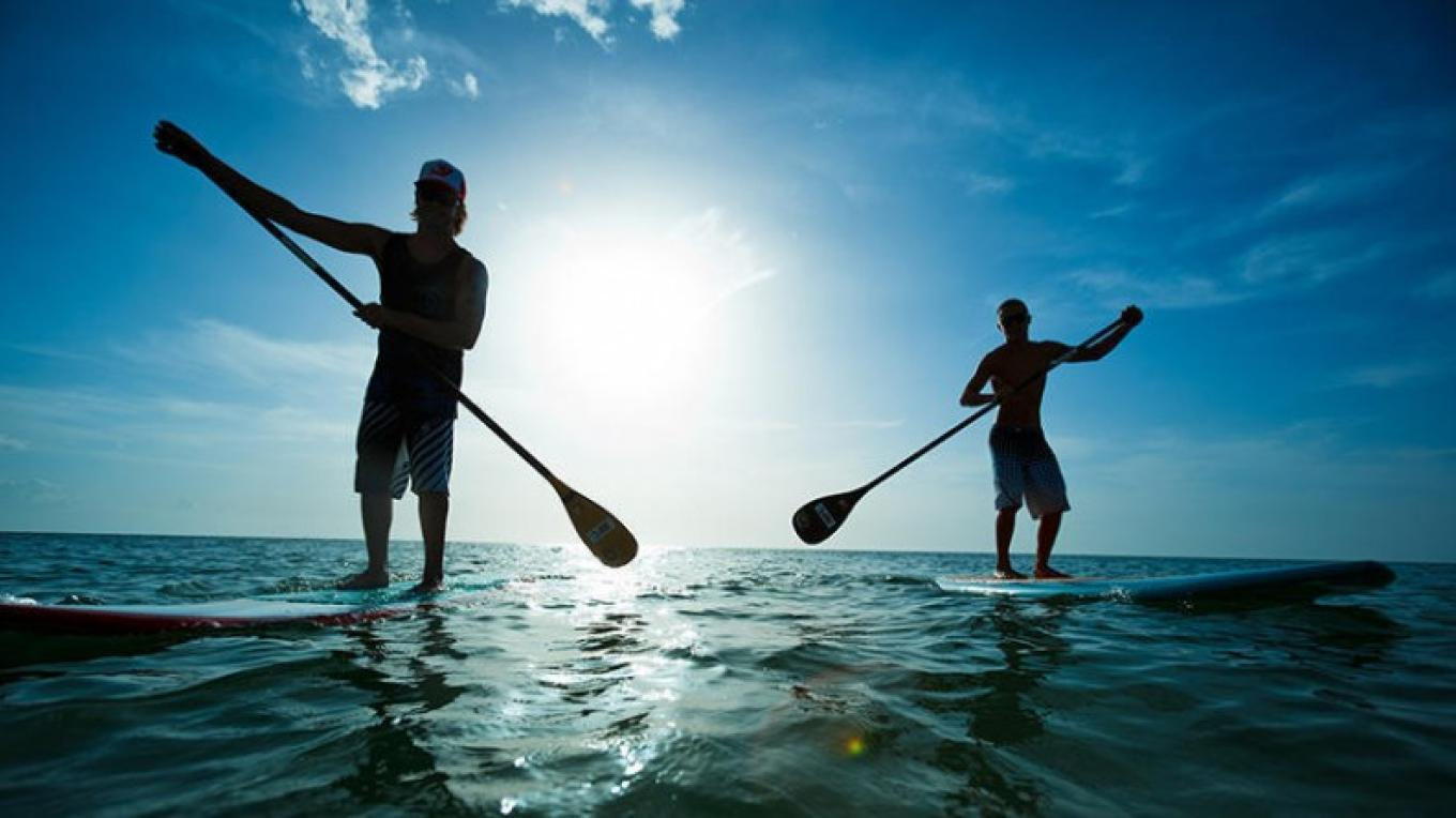 Stand Up Paddleboard on the bay, explore the interesting wrecks and Chepes Reef. Bring your own or rent a mask and snorkel because you might find dolphins on the harbour. – The Venue Utila