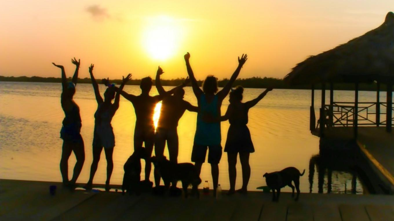 Pet friendly as long as your pet is friendly. – The Venue Utila