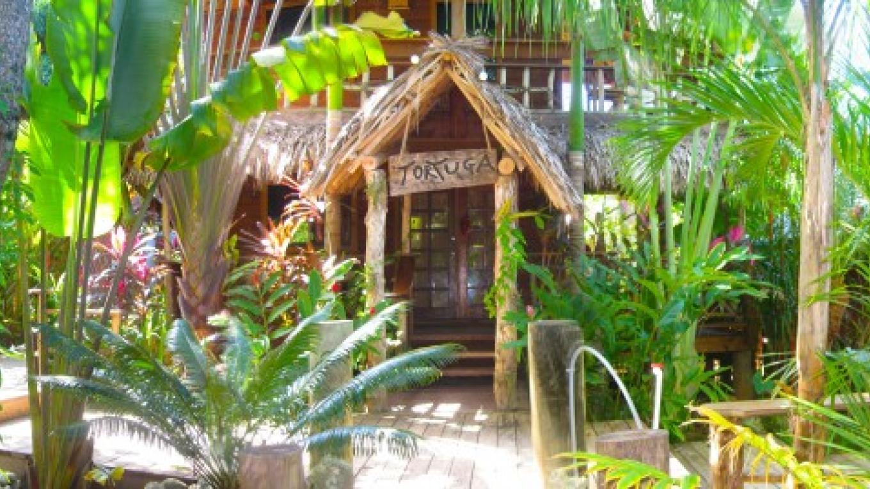entrance to the Turtle cabana – chris benson