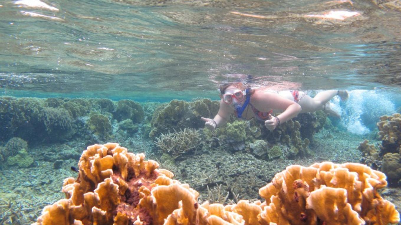 """South Side of the Bowl, Snorkeling / El sur de """"The Bowl"""", el snorkel – Giacomo Palavicini"""