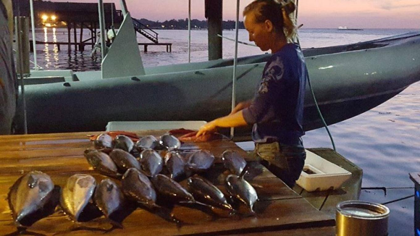 Sustainable and fresh Tuna caught by Ruthless – Ruthless Roatan Charters