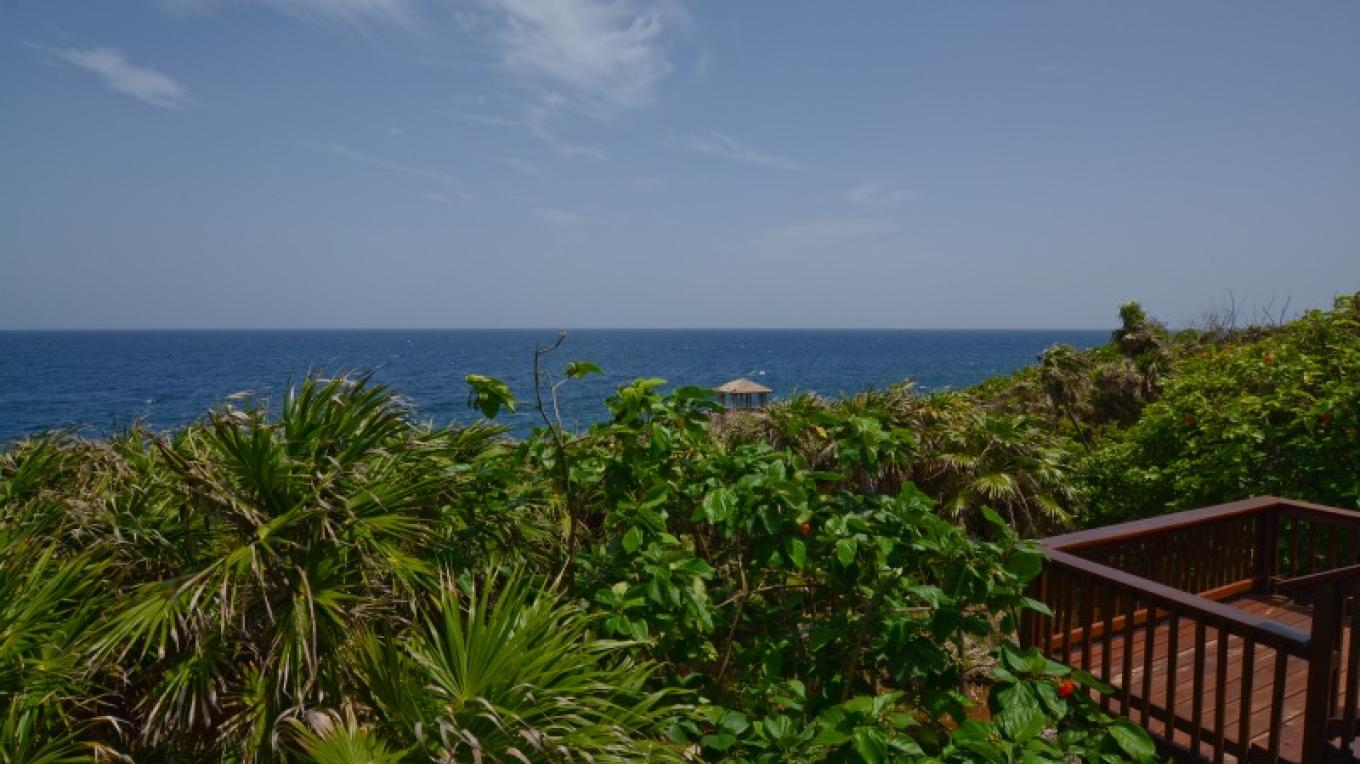 View from Annabel's deck – Ruth Healey-Elmore