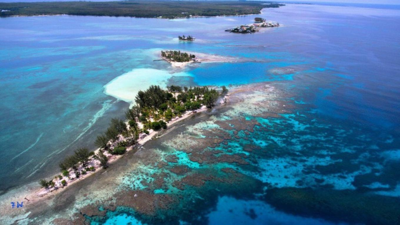 Aerial view of Water Cay / Vista aérea de Water Cay – Adrian Jones