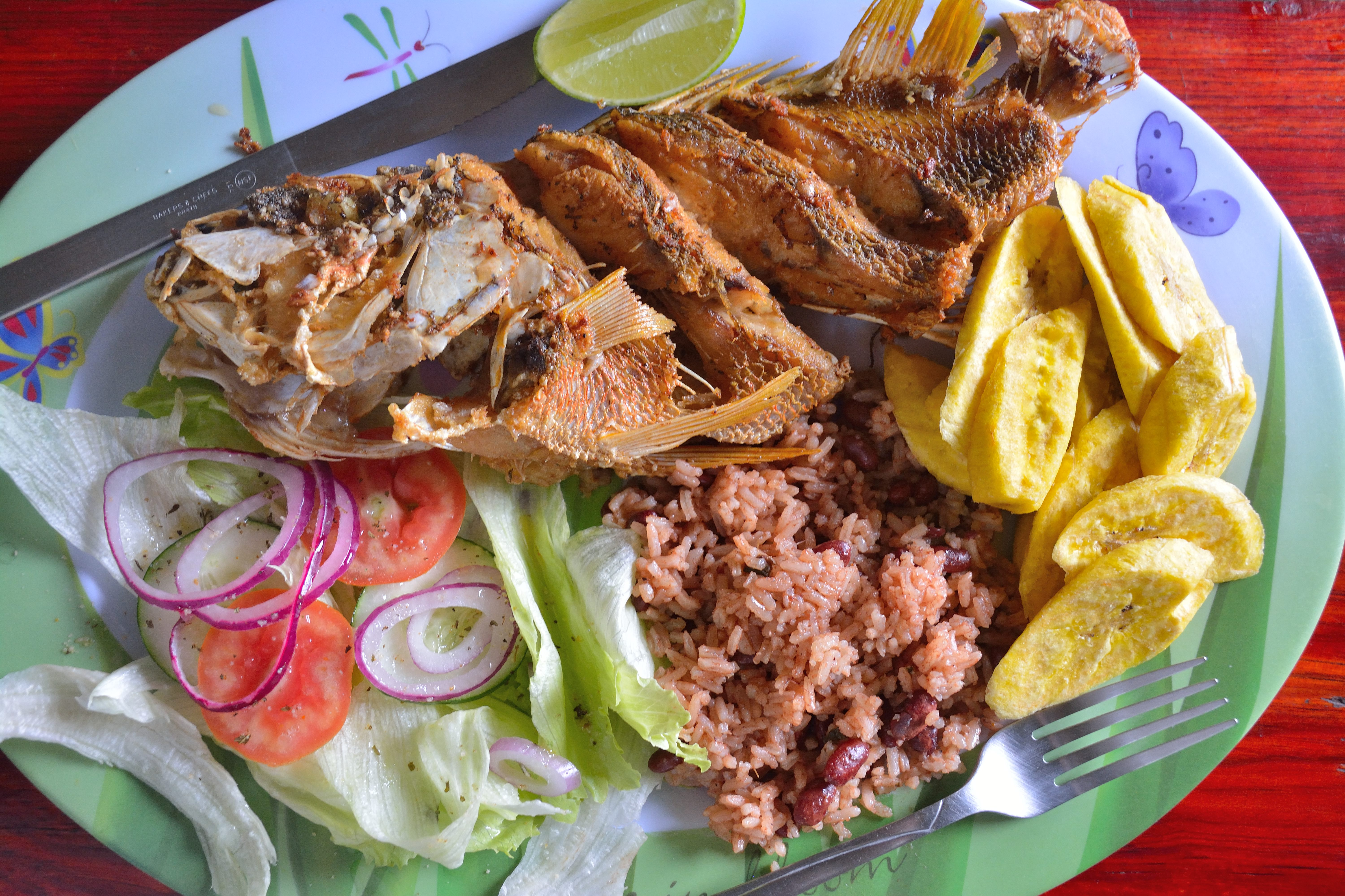 Red Snapper, rice & beans, fried plantains, and a salad - a local seafood plate courtesy of Sacrifice Restaurant in Punta Gorda, Roatan. – Manlio Martínez