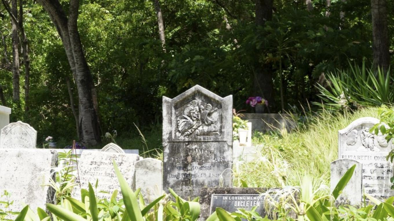Headstones / Las lápidas mortuorias – Carey Satin