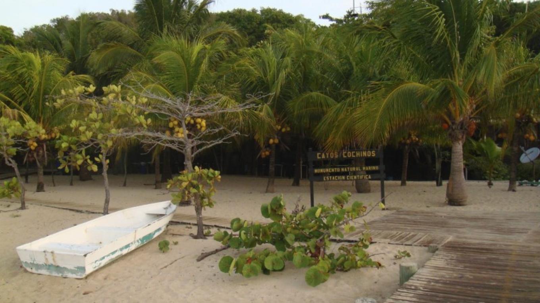 Research Station in Cayo Menor. Register here for your visit. / Estación de Investigación en Cayo Menor. Regístrese aquí para su visita – Carey Satin