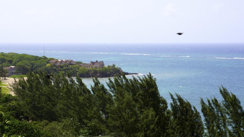 Paya Bay – Carey Satin