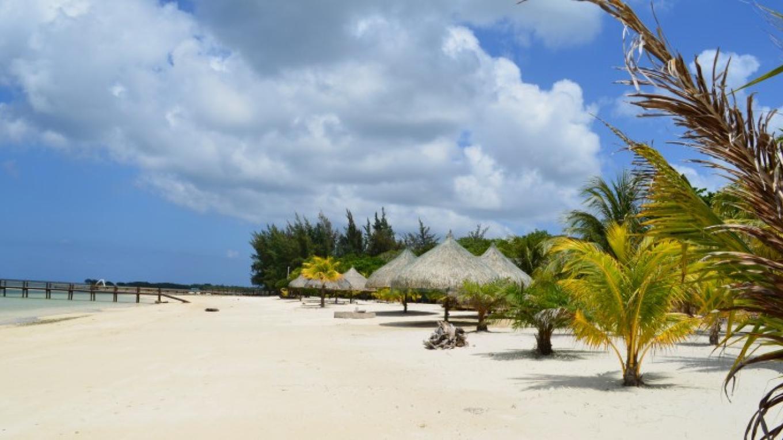 West End of Palm Beach / West End en Palm Beach – Amy Murphy