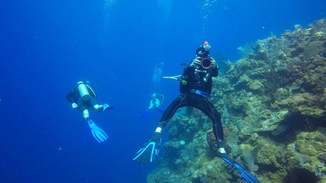 Snorkel or Dive the Mesoamerican Reef, the largest barrier reef system in the Western Hemisphere – Loida Oyuela