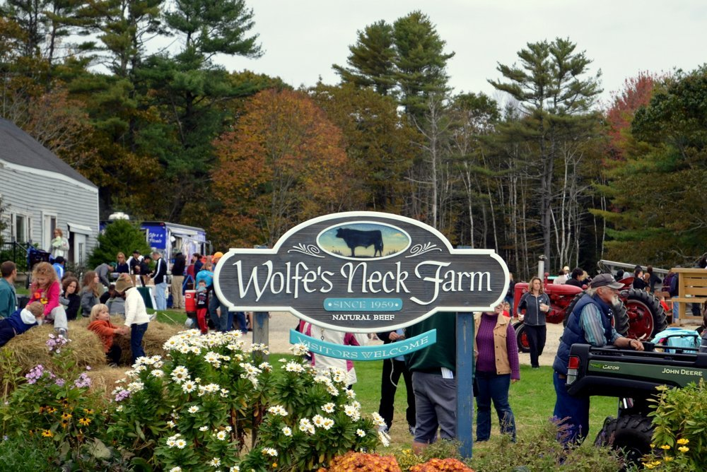 Fall Festival at Wolfe's Neck Farm
