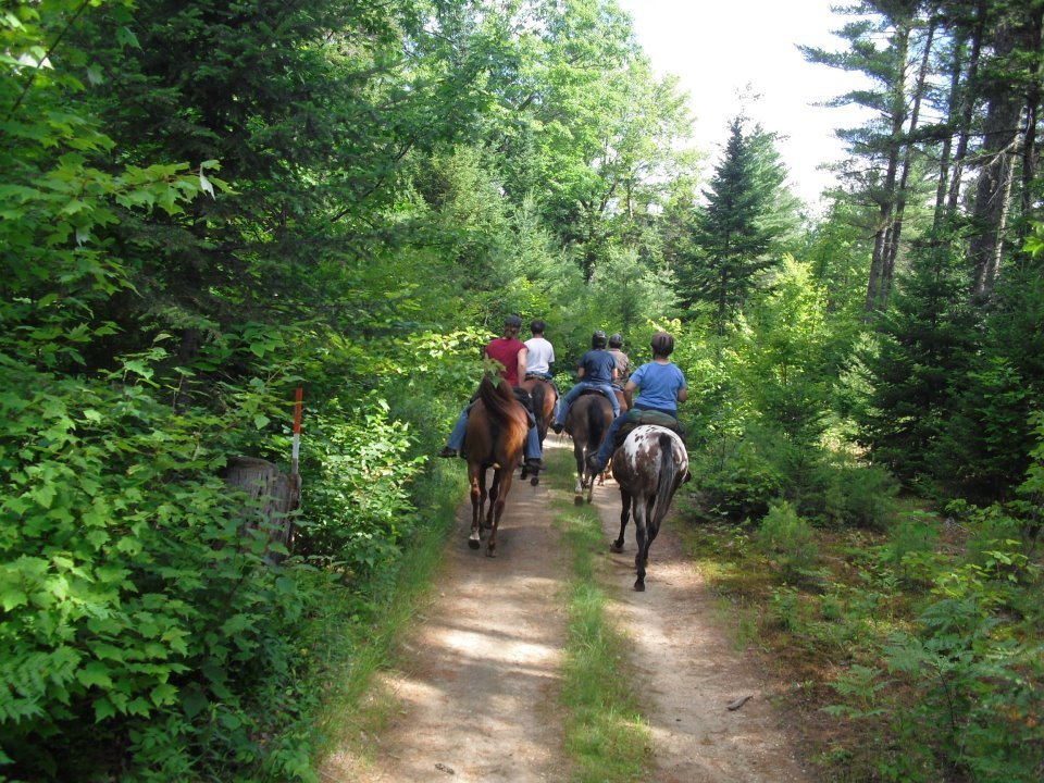 One of the lovely horseback trails directly accessed from the farm.